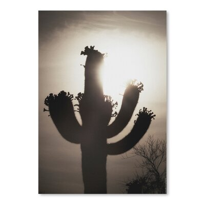 Americanflat 'Saguaro Sunrise 10' by Murray Bolesta Photographic Print