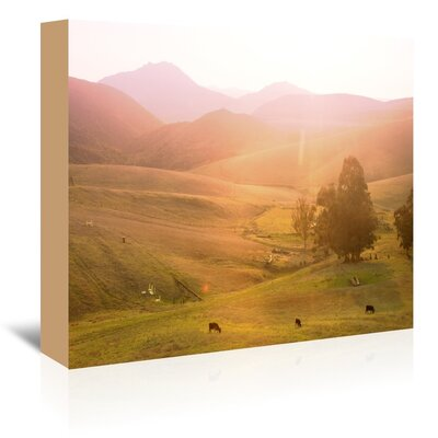 Americanflat 'Cows' by Mina Teslaru Photographic Print Wrapped on Canvas