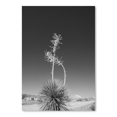 Americanflat 'Road Trip 4' by Murray Bolesta Photographic Print