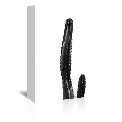 Americanflat 'Large Cactus Up To' by Melinda Wood Photographic Print Wrapped on Canvas