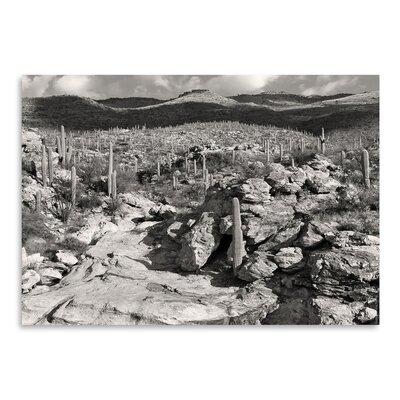 Americanflat 'Morning Desert Vista' by Murray Bolesta Photographic Print