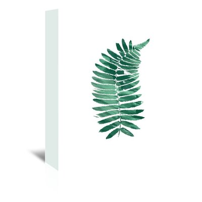 Americanflat 'Fern_Single' by The Glass Mountain Graphic Art Wrapped on Canvas