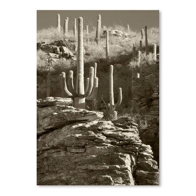Americanflat 'Esperanto Canyon 2' by Murray Bolesta Photographic Print
