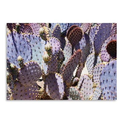 Americanflat 'Mess O'Cactus 2' by Murray Bolesta Photographic Print