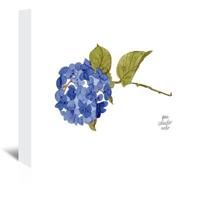 Americanflat 'Hydrangea' by Gina Maher Art Print Wrapped on Canvas