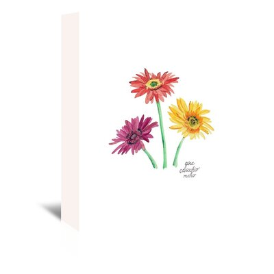 Americanflat 'Gerber Daisies' by Gina Maher Art Print Wrapped on Canvas