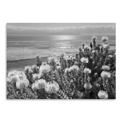 Americanflat 'Protea And Pacific' by Murray Bolesta Photographic Print