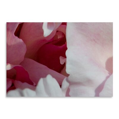Americanflat 'Peony Diptych' by Rose Anne Colavito Graphic Art