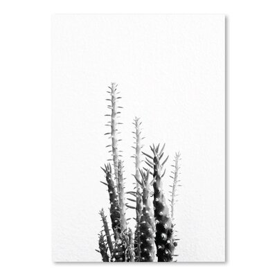 Americanflat 'Cactus Up To' by Melinda Wood Photographic Print