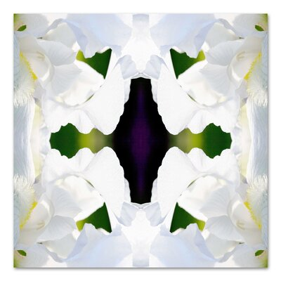 Americanflat 'Wedding Iris' by Rose Anne Colavito Graphic Art