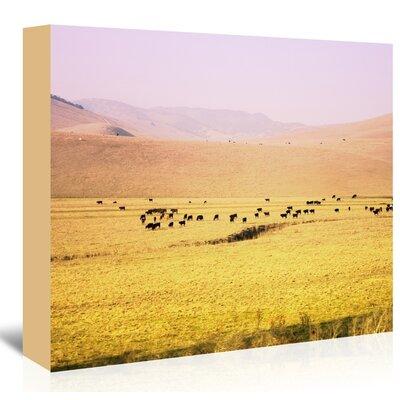 Americanflat 'Coastal-Farm' by Mina Teslaru Photographic Print Wrapped on Canvas