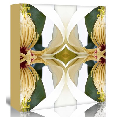 Americanflat 'Baroque Magnolia' by Rose Anne Colavito Graphic Art Wrapped on Canvas
