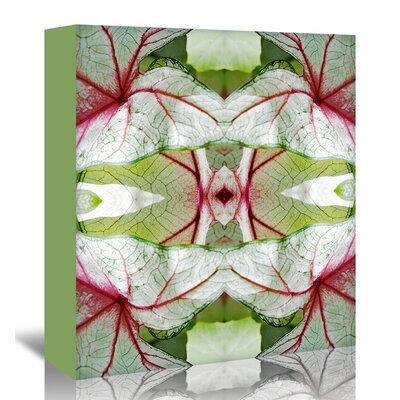 Americanflat 'Red Green Caladium' by Rose Anne Colavito Graphic Art