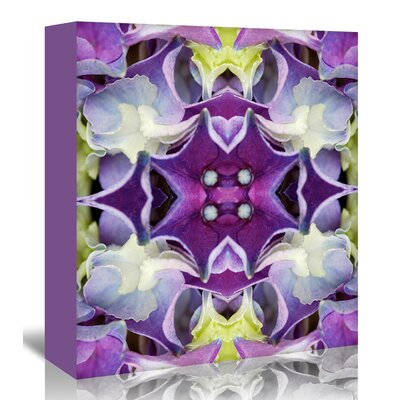 Americanflat 'Hydrangea' by Rose Anne Colavito Graphic Art Wrapped on Canvas