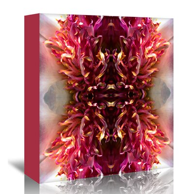 Americanflat 'Peony Frizzle' by Rose Anne Colavito Graphic Art Wrapped on Canvas