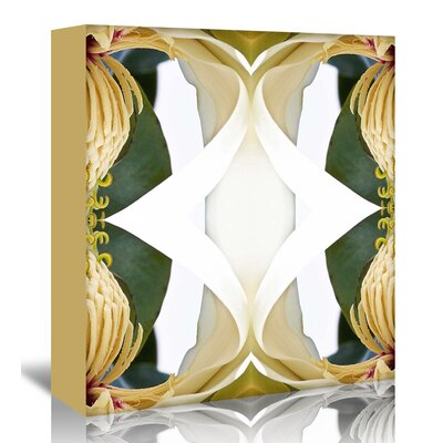 Americanflat 'Baroque Magnolia2' by Rose Anne Colavito Graphic Art Wrapped on Canvas