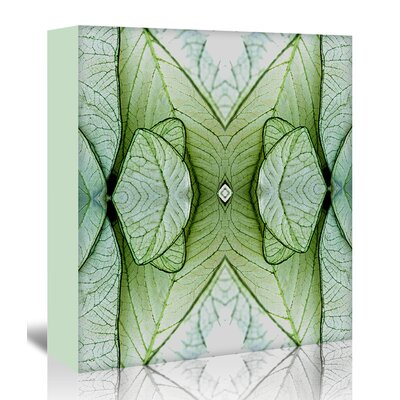 Americanflat 'White Caladium 3' by Rose Anne Colavito Graphic Art Wrapped on Canvas