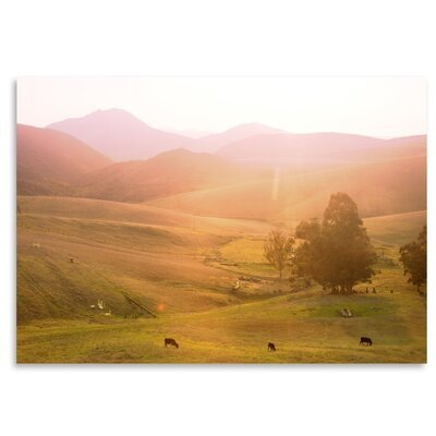 Americanflat 'Cows' by Mina Teslaru Photographic Print
