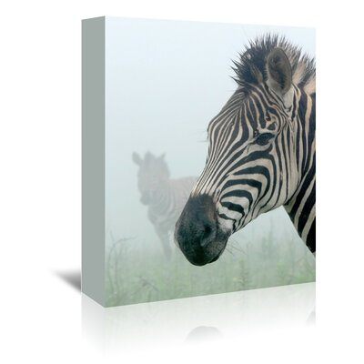 Americanflat Wonderful Dream Zebra in the Fog Photographic Print Wrapped on Canvas
