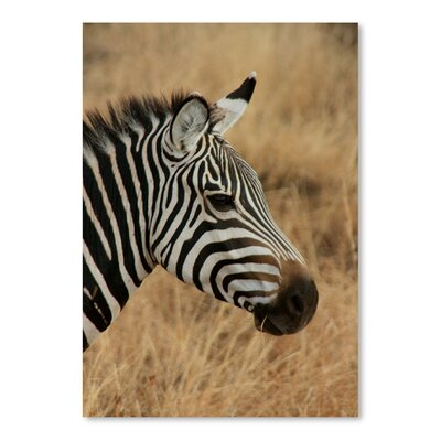 Americanflat Wonderful Dream Zebra Savannah Africa Photographic Print