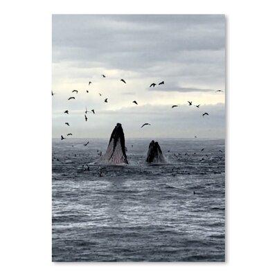 Americanflat Wonderful Dream Wildlife Whale Underwater Photographic Print