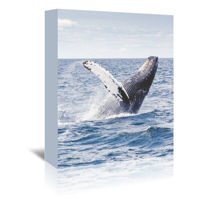 Americanflat Wonderful Dream Sea Life Ocean Whale Underwater Photographic Print Wrapped on Canvas