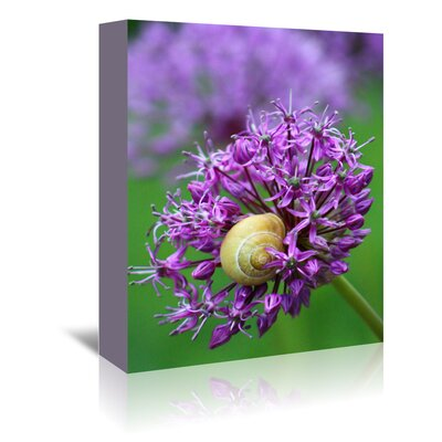 Americanflat Wonderful Dream Purple Alliums Flower Photographic Print Wrapped on Canvas