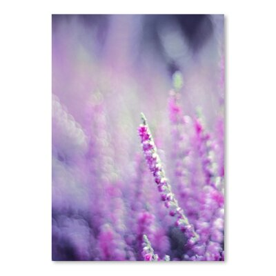 Americanflat Wonderful Dream Flower Bloom Nature Photographic Print