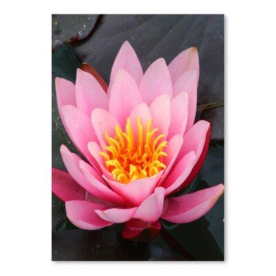 Americanflat Wonderful Dream Asia Lotus Flower Photographic Print