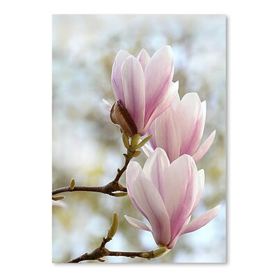 Americanflat Wonderful Dream Magnolia Flower Bloom Photographic Print