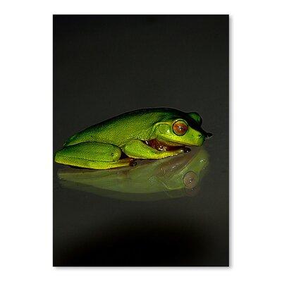 Americanflat Wonderful Dream Green Frog Graphic Art