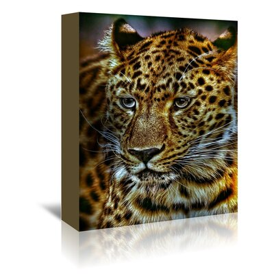 Americanflat Wonderful Dream Gepard Leopard Cat Wildlife Photographic Print Wrapped on Canvas