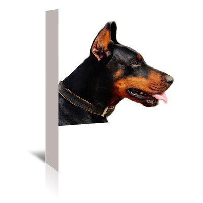 Americanflat Wonderful Dream Doberman Dog Photographic Print Wrapped on Canvas
