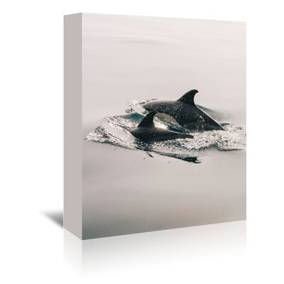 Americanflat Wonderful Dream Family Dolphin Sea Life Photographic Print Wrapped on Canvas