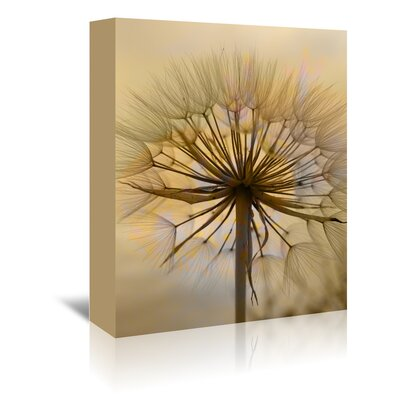 Americanflat Wonderful Dream Dandelion Flower Nature Photographic Print Wrapped on Canvas