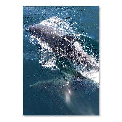 Americanflat Wonderful Dream Dolphin Sea Life Underwater Photographic Print