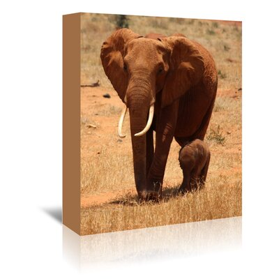 Americanflat Wonderful Dream Elephant Africa Photographic Print Wrapped on Canvas