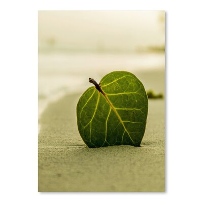Americanflat Wonderful Dream Beach Style with Leaf Photographic Print
