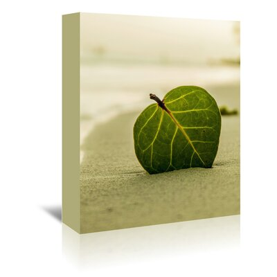 Americanflat Wonderful Dream Beach Style with Leaf Photographic Print Wrapped on Canvas