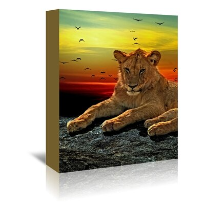 Americanflat Wonderful Dream Wildlife Lion Savanna Africa Photographic Print Wrapped on Canvas