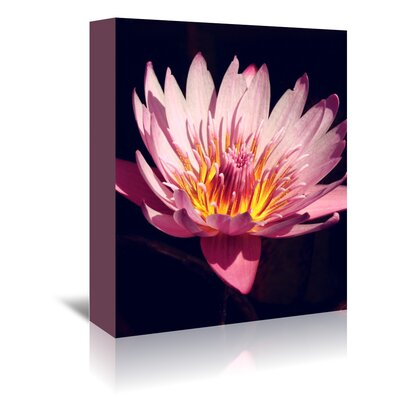 Americanflat Wonderful Dream Asia Lotus Flower 3 Photographic Print Wrapped on Canvas