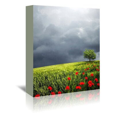 Americanflat Wonderful Dream Landscape Nature Style Photographic Print Wrapped on Canvas