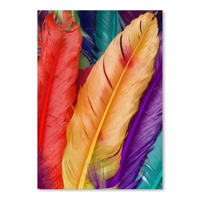 Americanflat Wonderful Dream Colourful Bird Feather Photographic Print