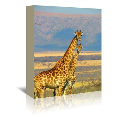 Americanflat Wonderful Dream Wildlife African Giraffe Photographic Print Wrapped on Canvas