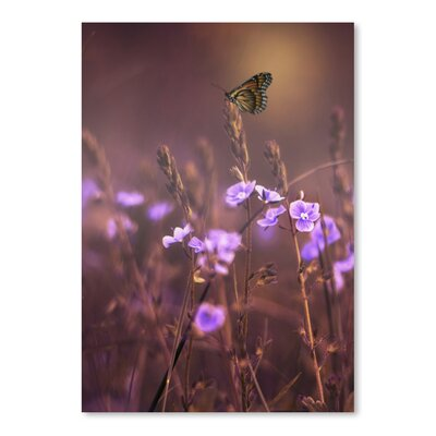 Americanflat Wonderful Dream Purple Flower with Butterfly Photographic Print