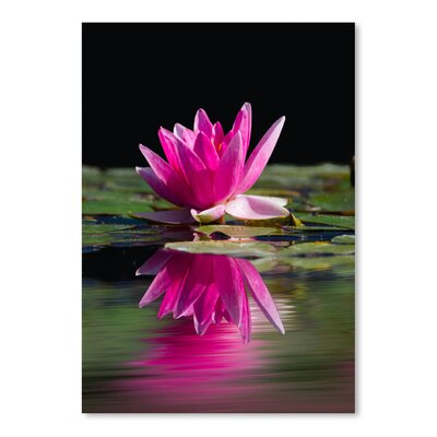 Americanflat Wonderful Dream Asia Lotus Flower 2 Photographic Print