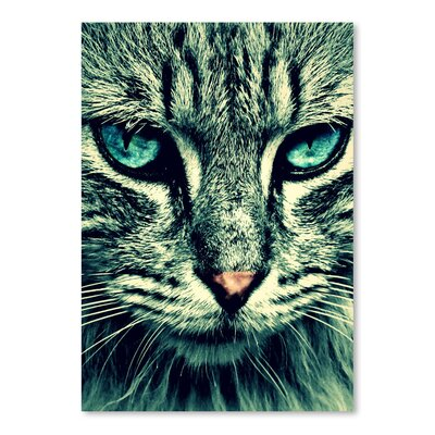Americanflat Wonderful Dream Wonderful Cat with Special Eyes Photographic Print