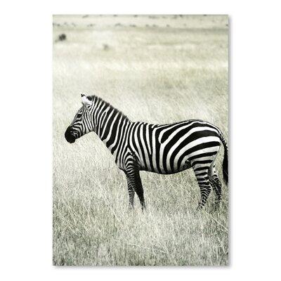 Americanflat Wonderful Dream Vintage Zebra Africa Photographic Print