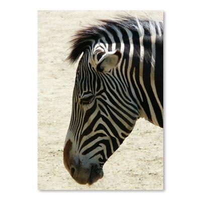 Americanflat Wonderful Dream Zebra Africa Wildlife Photographic Print