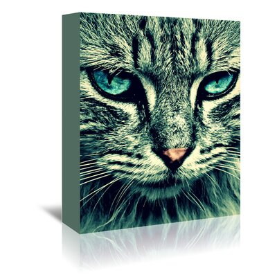 Americanflat Wonderful Dream Wonderful Cat with Special Eyes Photographic Print Wrapped on Canvas